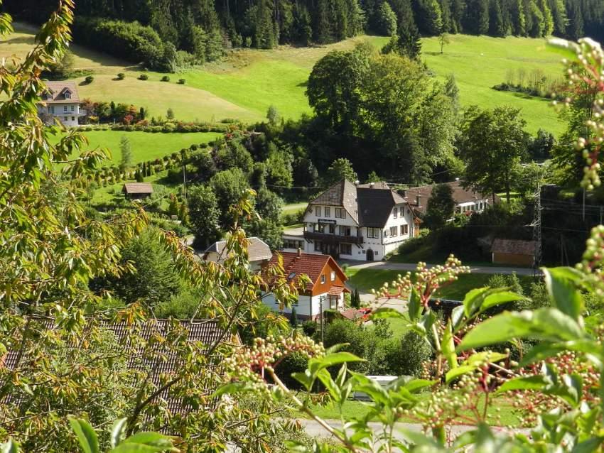 Ferienhaus für Gruppen als Selbstversorger im Schwarzwald