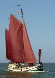Unter Segel auf dem IJsselmeer