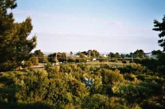 Villa Rosa in Apulien Ferienhaus  - Bild 6