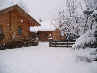 Ferienhaus Dummer Ferienhaus  - Bild 1