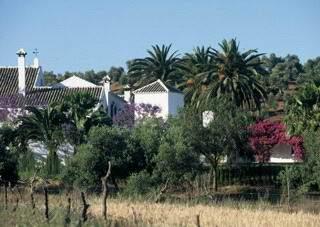 Hacienda Buena Suert Zimmer in Spanien - Bild 1