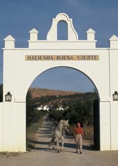Hacienda Buena Suert Zimmer in Spanien - Bild 2