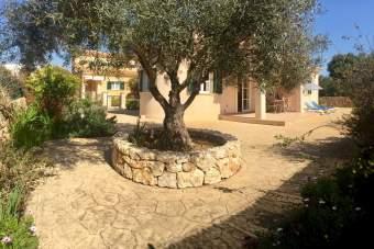 Casa OlivoYacaranda Ferienhaus  - Bild 8