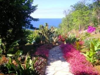 Domaine Lizardy Ferienhaus in Mittelamerika und Karibik - Bild 2