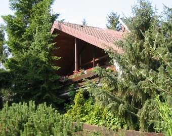 Eifel-Schwimmbad Ferienhaus in der Eifel - Bild 2
