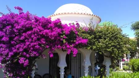 denia-pool - Ferienhaus