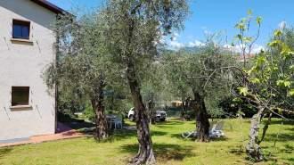 Ferienwohnung Ferienhaus LAURA in Malcesine am Gardasee  - Gardasee - Lago di Garda  Malcesine Malcesine - Grundriss