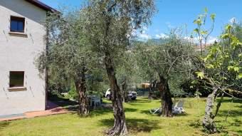 Ferienhaus LAURA in Malcesine am Gardasee  Ferienwohnung  Gardasee - Lago di Garda - Bild 3