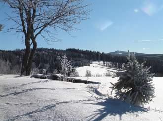 Ferienhaus Ziller Crottendorf - Blick zum Fichtelberg