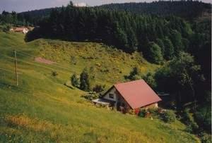 Ferienhaus Ferienhaus für Tierfreunde   - Schwarzwald   Schenkenzell