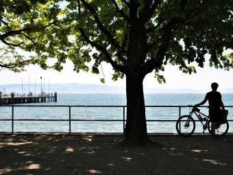 Ankommen-Entspannen-Wohlfühlen Ferienwohnung in Baden Württemberg - Bild 9