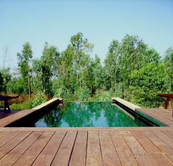 Green Gecko Ferienhaus in Asien und Naher Osten - Bild 2