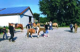 Fewo Föhr 4 Sterne Ferienwohnung in Schleswig Holstein - Bild 6
