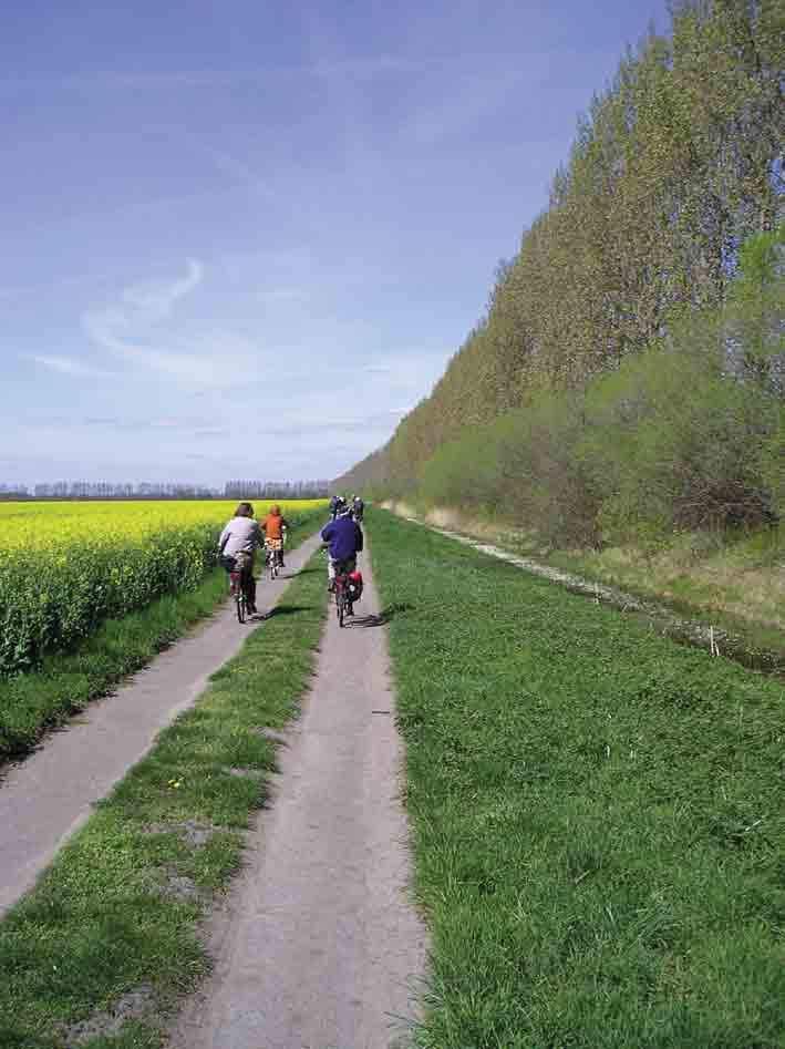 Fahrradfahren im Rhinluch