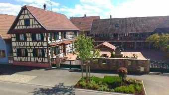 Ferienhaus Krauffel 4 8 pers Elsass nahe Obernai Ferienhaus  - Bild 1